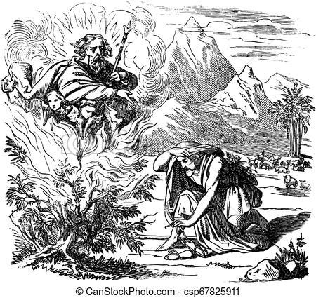 VHTK NHỮNG NHÂN VẬT CỰU ƯỚC 2 Câu Hỏi Thưa
